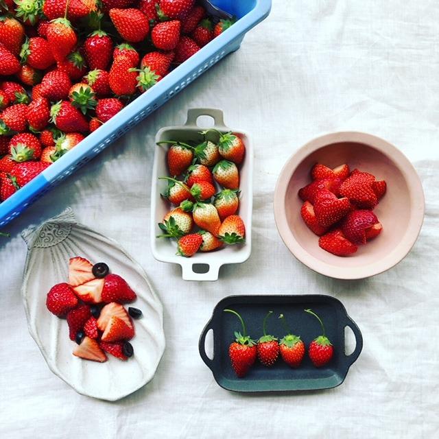 今朝、義父と義母が親戚のイチゴ農家さんからキレイなイチゴをたくさん摘んできてくれました。せっかくなので、色々な器と記念撮影♪